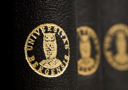 Våren 2013 skal det velges ny rektor og prorektor, nye medlemmer av universitetsstyret, og ledelse på fakultets- og instituttnivå.
