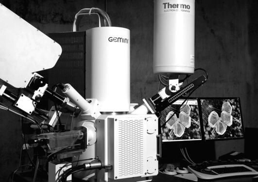 ZEISS Supra 55VP scanning elektronmikroskop.