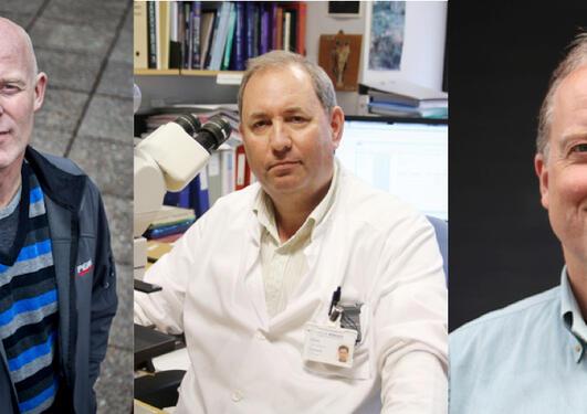 Nikolai Østgaard, Lars A. Akslen og Halvor Sommerfelt leder de tre nye...