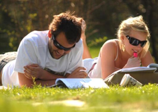 To studenter som ligger i gresset og studerer.