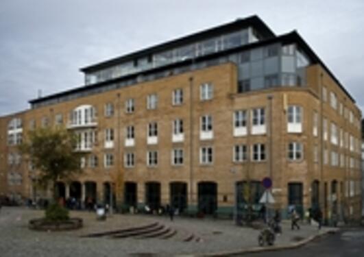 Forskarane på SV-fakultetet har fått god uttelling for publisering på internasjonale forlag og tidskrift i 2010.