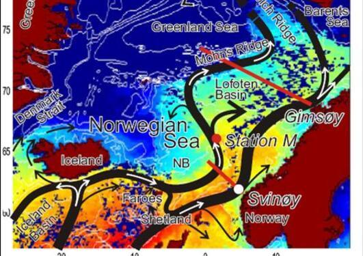 Området for NACO er fra Svinøy til Lofoten....