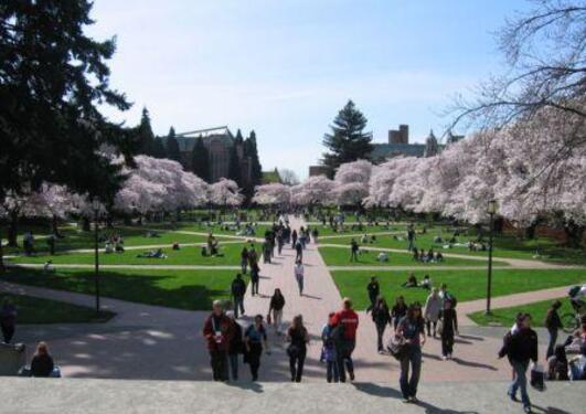 Campus at University of Washington