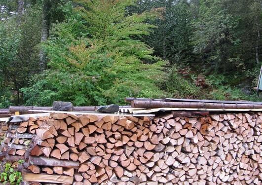 In the foreground, a full cord of mixed, dry wood – in the background, a...